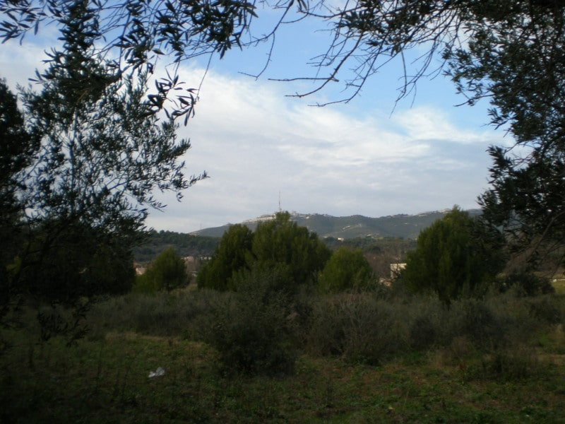 terrain marseille chateau gombert