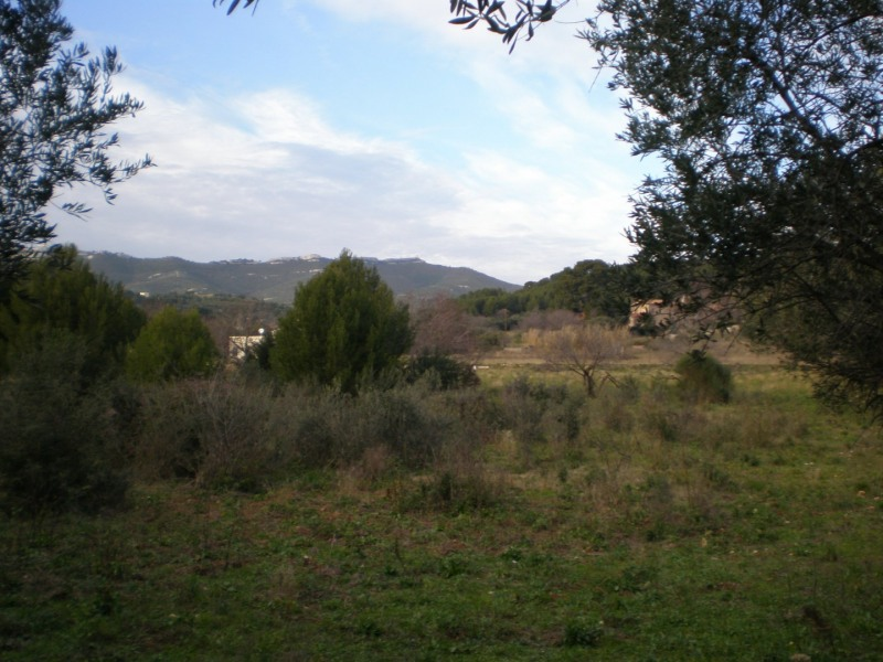 terrain a vendre a marseille chateau gombert